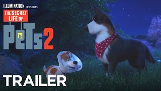 The Secret Life of Pets 2 (2019) Video
