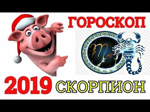 ГОРОСКОП-2019 *СКОРПИОН* -САМЫЙ ТОЧНЫЙ АСТРОПРОГНОЗ НА ГОД СВИНЬИ