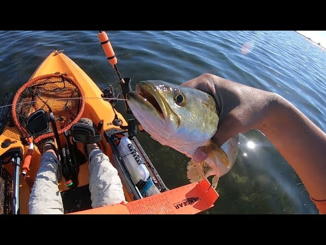 Kayak Fishing South Padre Island behind the SPI Convention Center in the 2019 Hobie Outback!