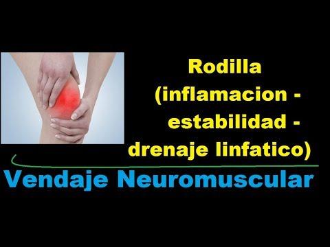 Prótesis y articulaciones ortopédicos
