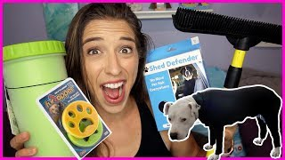 Testing Pet Owner Cleaning Products