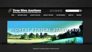 What Would You Like Sold? Auctioneers At True Blue Auctions Get Results!