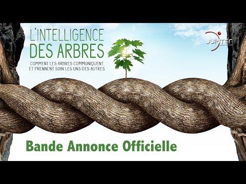 L'Intelligence des Arbres // Bande Annonce Officielle // VF