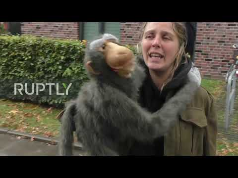 Germany: Thousands march against animal testing facility in Hamburg