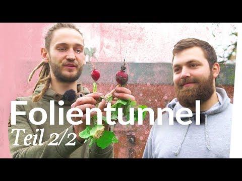 Aussaat für den Winter / Folientunnel winterfest machen 2/2 | Kliemannsland