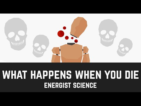 What happens when you DIE? (Science Video)