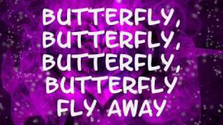 Miley Cyrus- Butterfly fly away (lyrics)