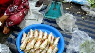preview picture of video 'June 13, 2011 Pasar Borong Buloh Kubu Kota Bharu Kelantan (4)'