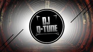 Vixa Pixa (DJ Q-Tune & Disco Polo New Mix)