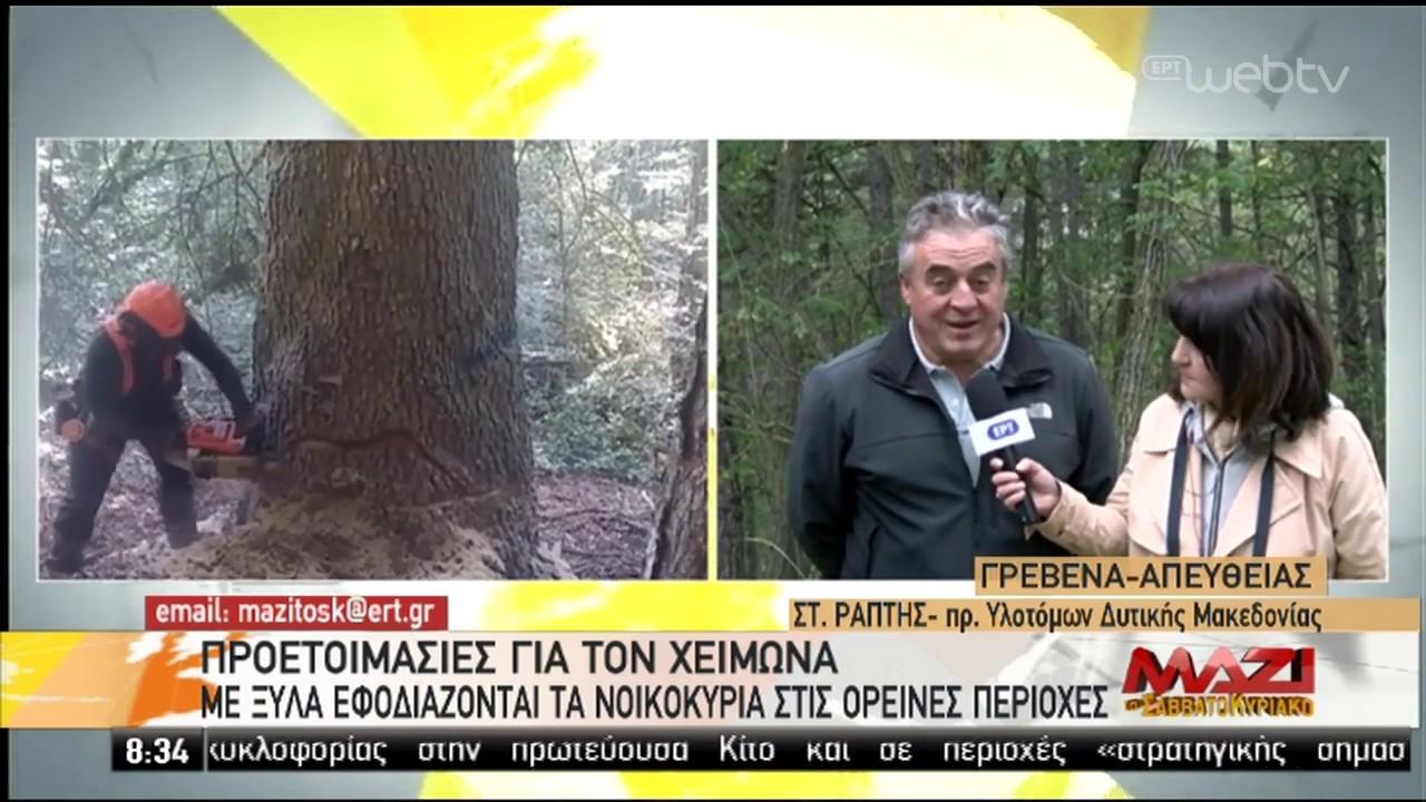 Προετοιμασίες για το χειμώνα-Με ξύλα εφοδιάζονται τα νοικοκυριά στις ορεινές περιοχές |14/10/19| ΕΡΤ