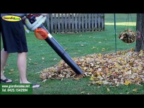Per il mio giardino devo usare un soffiatore o un aspiratore di foglie?