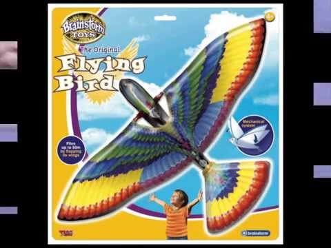 Youtube Video for The Original Flying Bird
