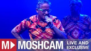 Devo - Gut Feeling/Slap Your Mammy | Live in Santa Ana | Moshcam