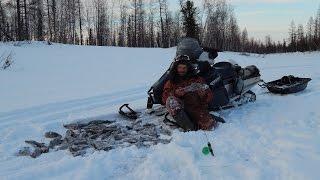 Ловля хариуса зимой со льда на енисее