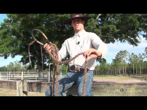 Explaining The Hackamore And Bosal