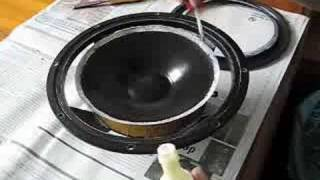 Refoaming an 8 inch woofer