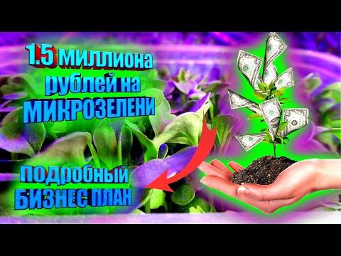 , title : '1.5 МИЛЛИОНА НА МИКРОЗЕЛЕНИ. Подробный БИЗНЕС ПЛАН.