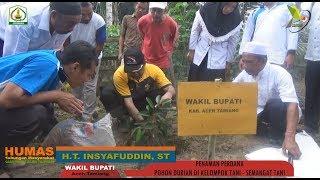 Penanaman Perdana Pohon Durian oleh Wakil Bupati Aceh Tamiang