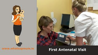 First Antenatal Visit