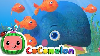 Baby Blue Whale Song | Cocomelon (ABCkidTV) Nursery Rhymes & Kids Songs