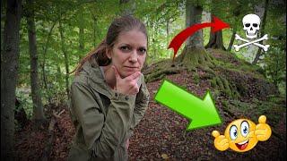 Verloren/Verlaufen im Wald - Und jetzt? ➡️Mit diesen Tipps kannst du es überstehen⬅️