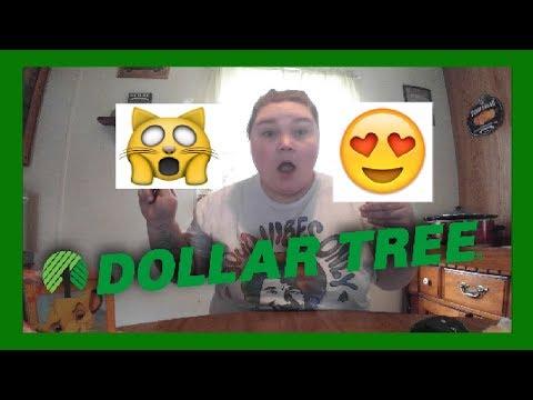 Jackpot | Dollar Tree Haul