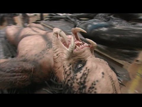 'Alien vs. Predator' Interview