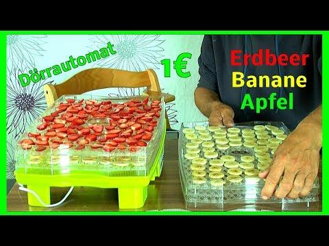 Bananen Chips Erdbeeren und Apelstücke trocknen im Dörrautomaten