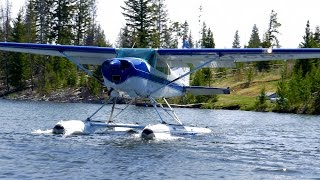 Cessna 180 On Floats Taking Off