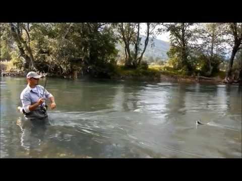 Fly fishing Montenegro 2013