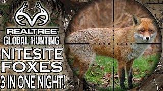 Night Vision Fox Hunting - Three In One Night!