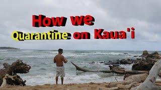 How We Locals Quarantine On Kauai, Hawaii   Drone Over Paradise   DJI Mavic Air 2   Family Vlog   HI