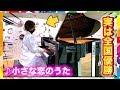 【映画公開】小さな恋のうたをヤンキーがガチで弾いてみたww(MONGOL800/street piano performance in station)