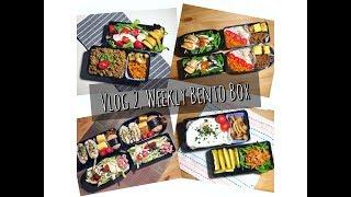 【潘野耶的小厨房】Vlog.2 Weekly Bento Box  这周午餐便当吃了什么?忙成狗的一周就仰仗常备菜啦!