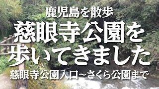 森林浴鹿児島を散歩〜慈眼寺公園〜
