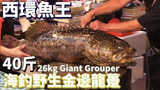 Chopping 26kg Wild Giant Grouper Alive Bloody Caution【OH! Seafood 4K】