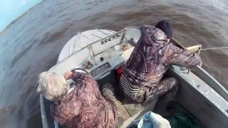 Провязы для рыбалки