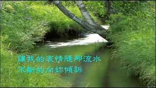 史逸欣  綠島小夜曲/<b>Vienna Teng</b>  Green Island Serenade