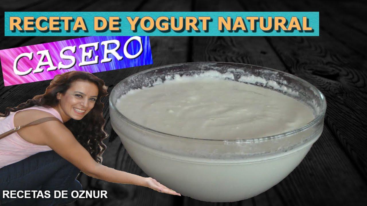 YOGURT NATURAL CASERO SIN YOGURTERA | recetas de cocina faciles rapidas y economicas de hacer