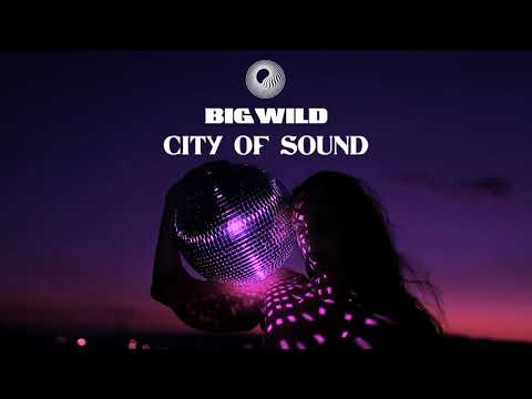 Big Wild City Of Sound