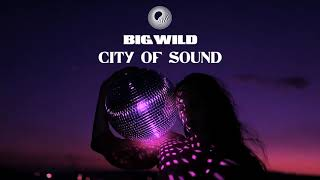 Big Wild   City Of Sound
