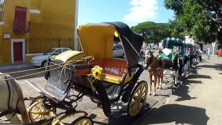 preview picture of video 'Horse carriages in Izamal'