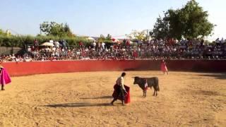 preview picture of video 'Fiesta del Cristo de Saceruela 2011 Toros 1/6'