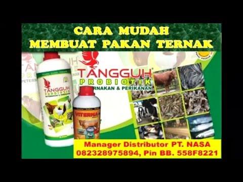 Video CARA BETERNAK  KAMBING TANPA NGARIT TANPA ANGON 082328975894