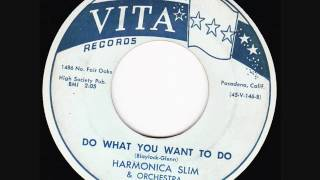Harmonica Slim -  Do What You Want To Do