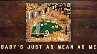 Steve Earle & The Dukes - Baby's Just As Mean As Me [Audio Stream]