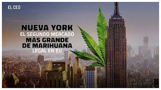 Nueva York, el segundo mercado más grande de marihuana legal