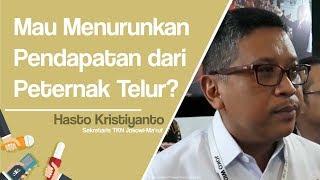 Balas Kritik Mardani Soal Telur, TKN Jokowi-Ma'ruf: 10 Tahun Menteri Pertanian Dijabat Kader PKS