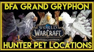 BFA - Grand Gryphon/Feathermane Hunter Pet Locations