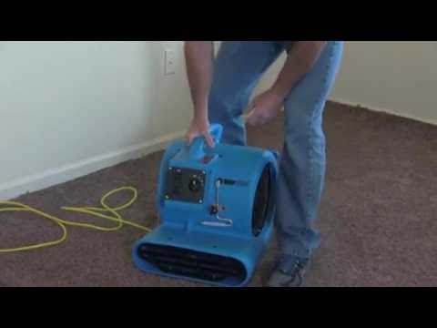 Carpet Dryer - Blower (Premium)